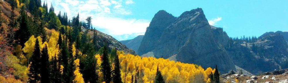 Big Mountain Insurance Group